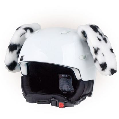 Picture of Crazy Ears - Dog Dalmatian