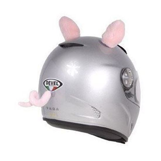 Picture of Piggy Ears &Tail