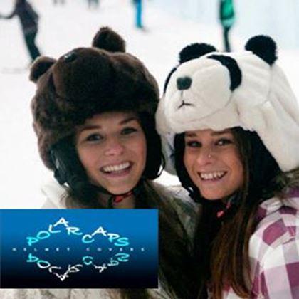 Picture for manufacturer Polarcaps